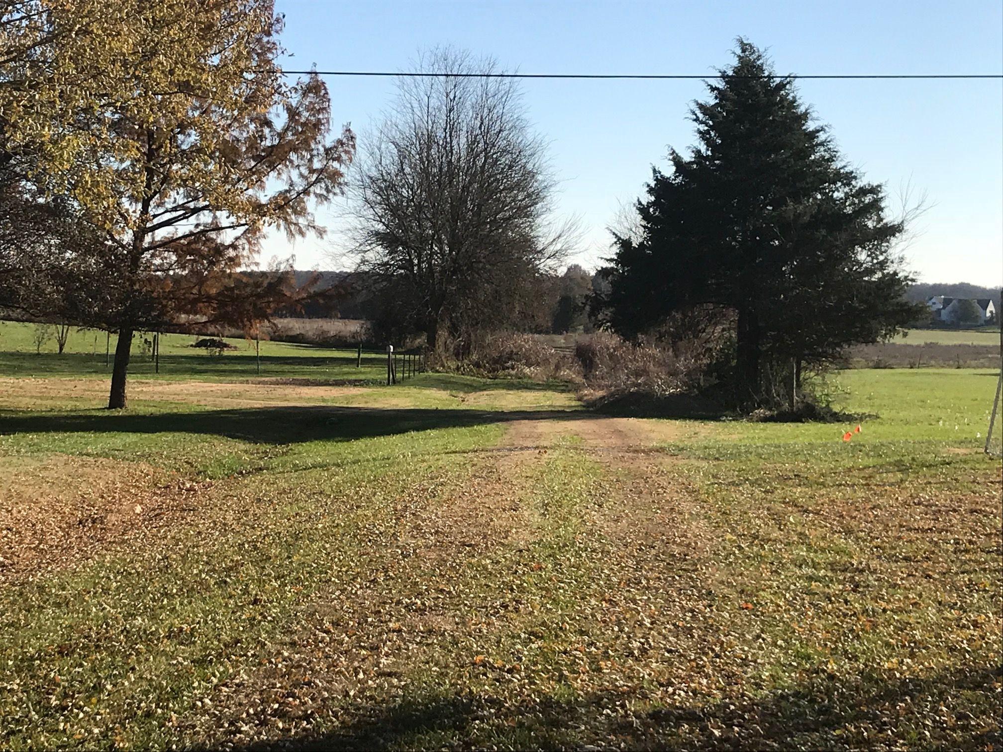 Farm Road 164 Rogersville, MO 65742