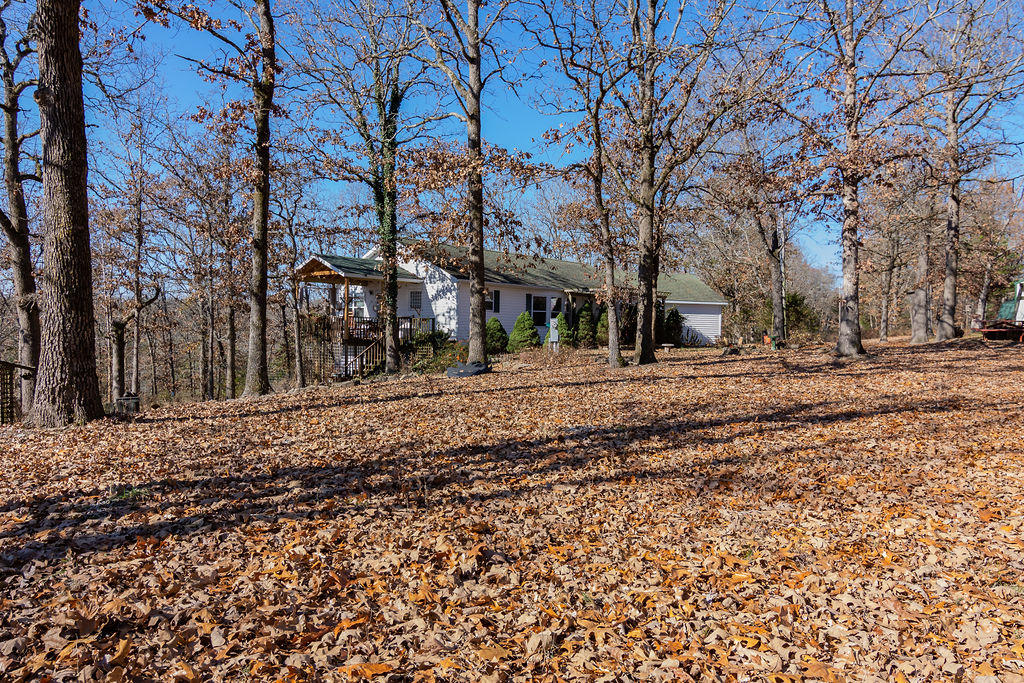 311 Tree Line Road Walnut Shade, MO 65771