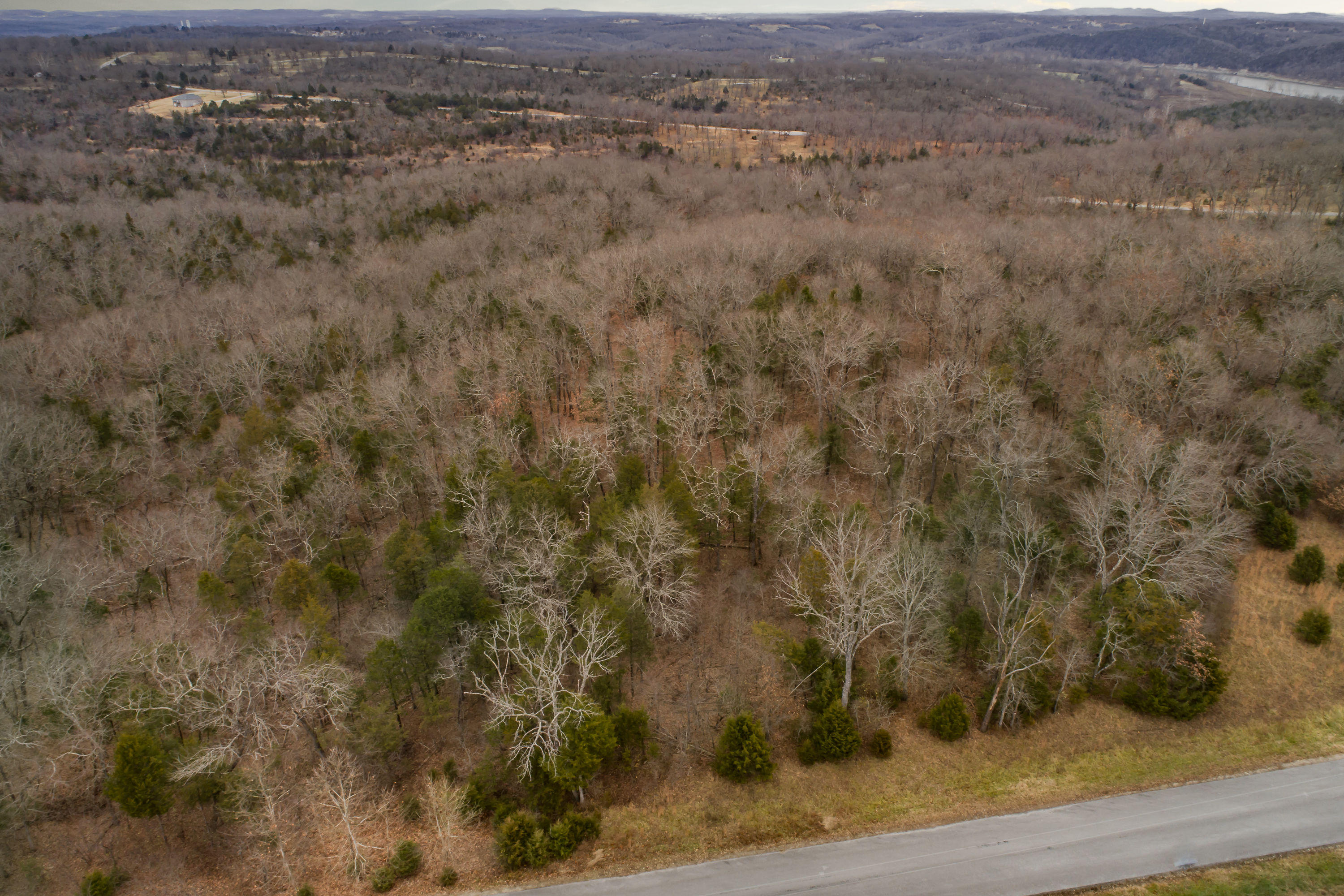 405 Long View Point Forsyth, MO 65653