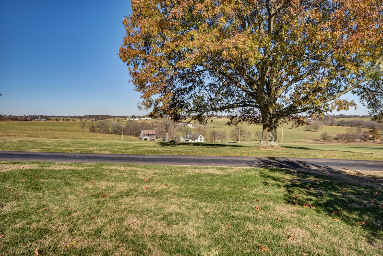 3671 South State Hwy P Republic, MO 65738