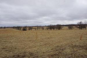 3 Meadowlark Road