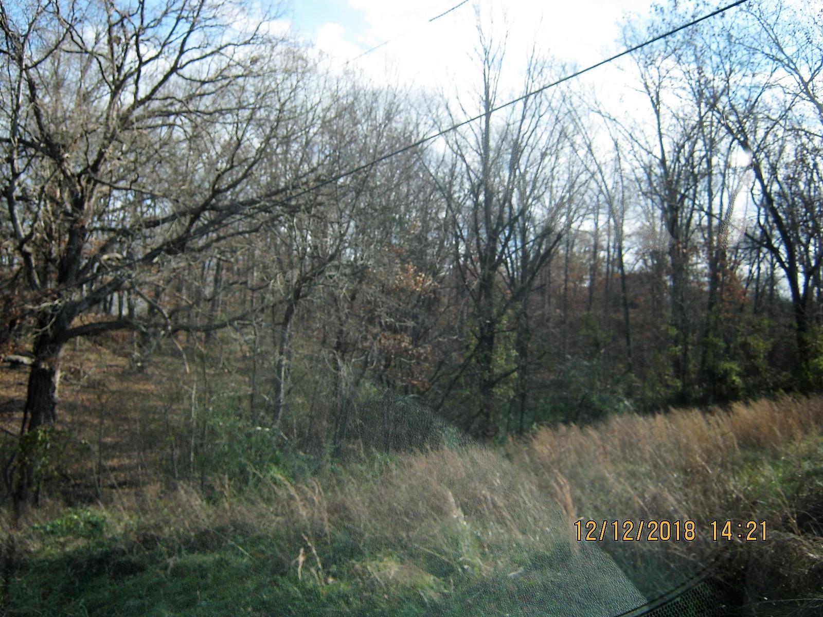 Tbd Oak Ridge Drive #Lot 39 Shell Knob, MO 65747