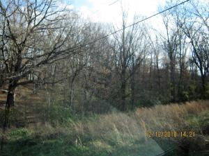 Tbd Oak Ridge Drive, Lot 39, Shell Knob, MO 65747