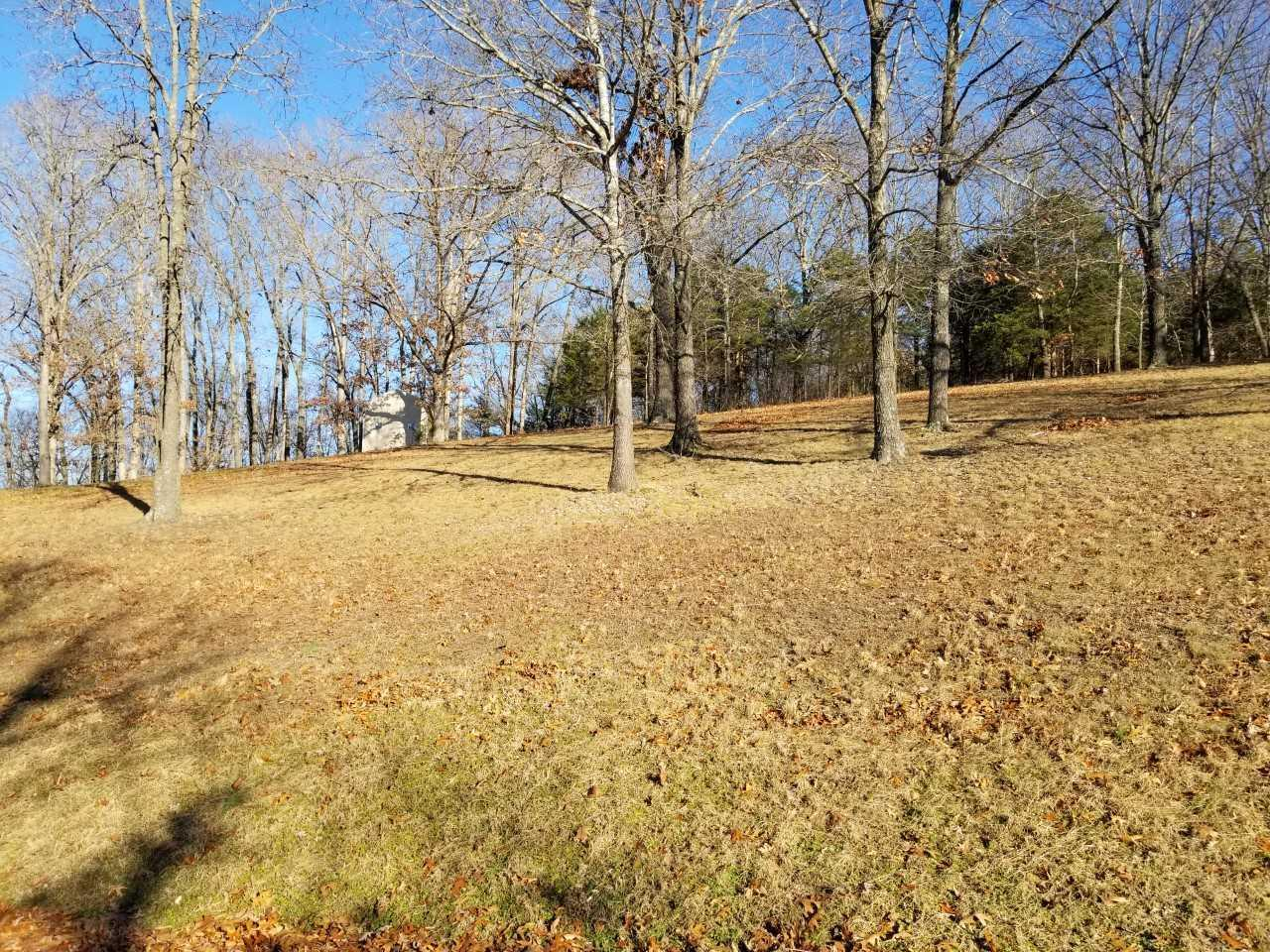 47 Canyon Forest East Kimberling City, MO 65686