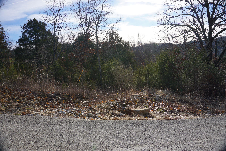 411 Silverwood Circle Branson West, MO 65737