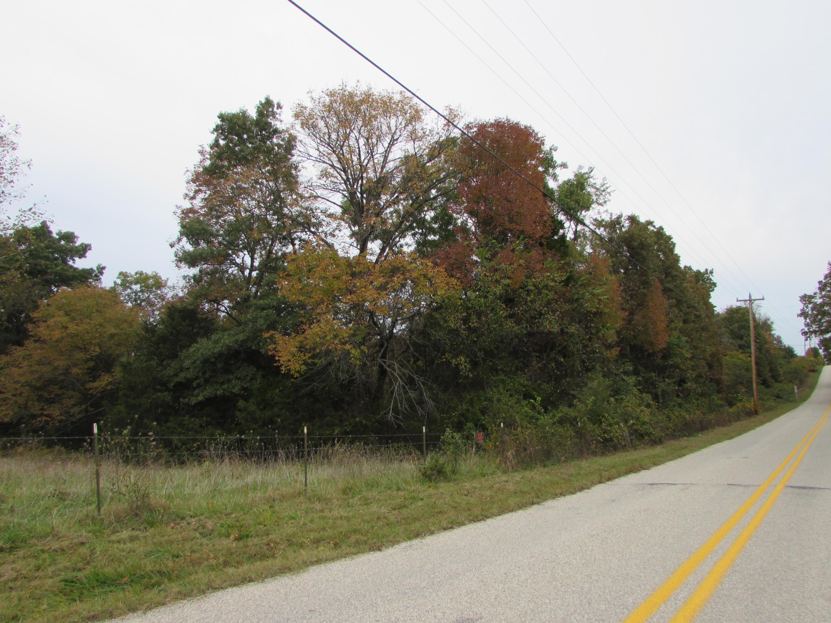 822 Deer Lane Kirbyville, MO 65679
