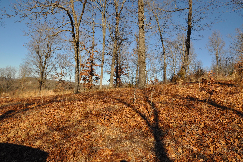 Lot 4 Woods Ridge Drive Highlandville, MO 65669