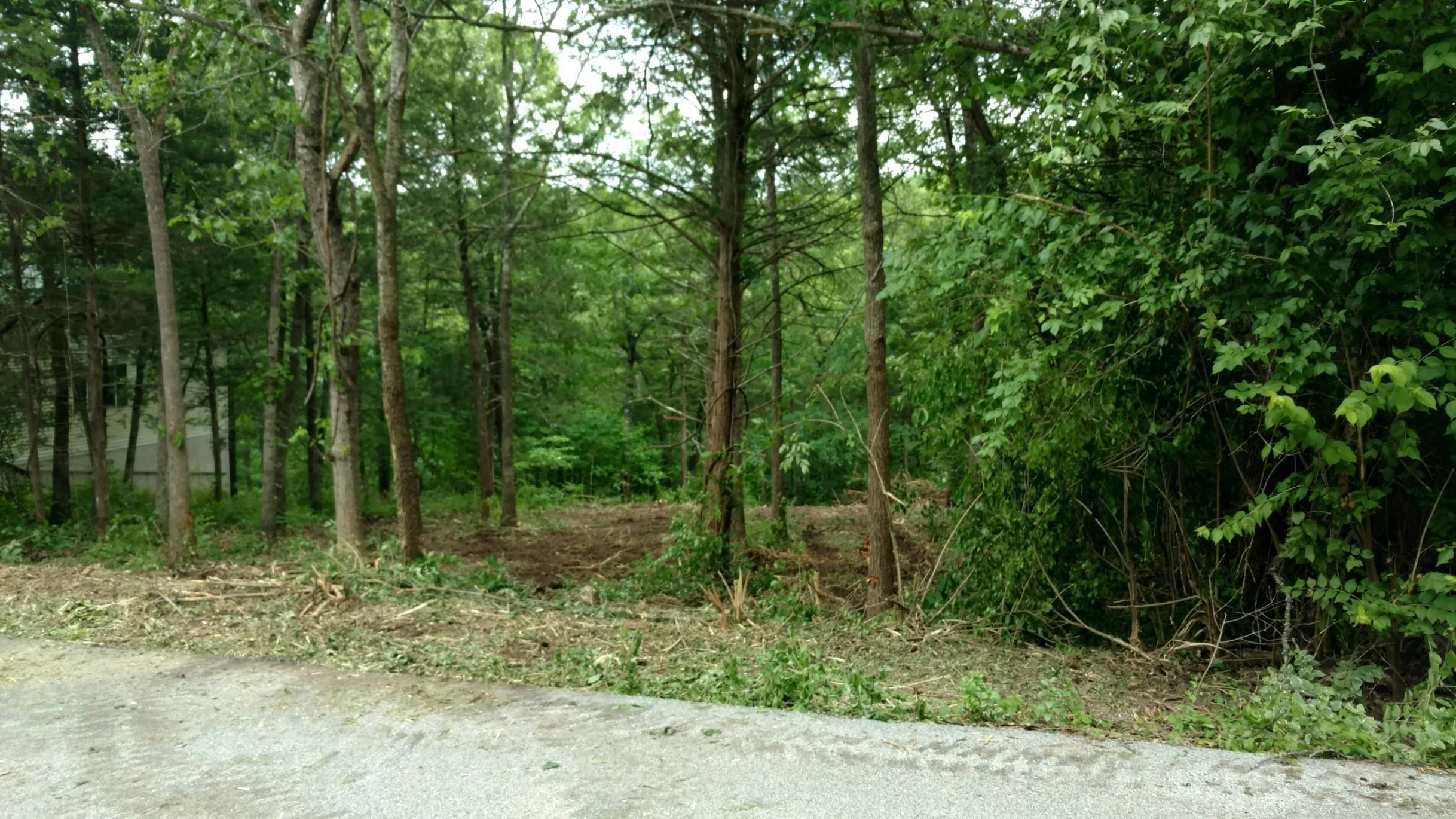 Lot 16 Black Hawk Road Forsyth, MO 65653