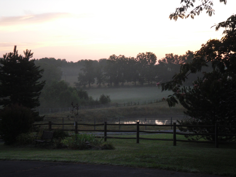 6363 South Farm Rd 119 Battlefield, MO 65619