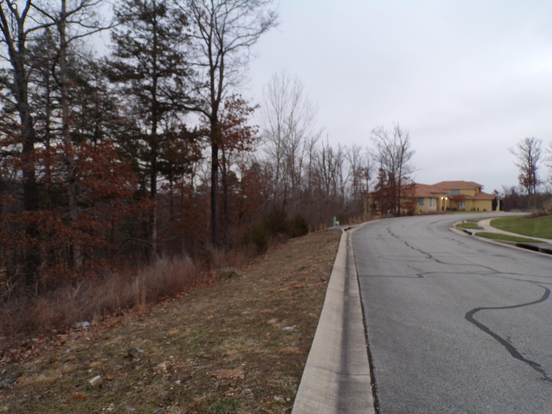 Tbd Shinnecock Hills Drive #Lot 13 Branson, MO 65616