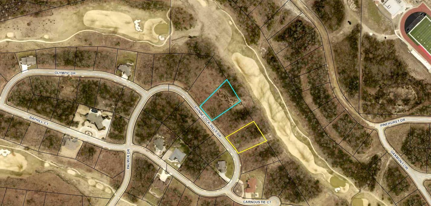 Tbd Shinnecock Hills Drive #Lot 15 Branson, MO 65616
