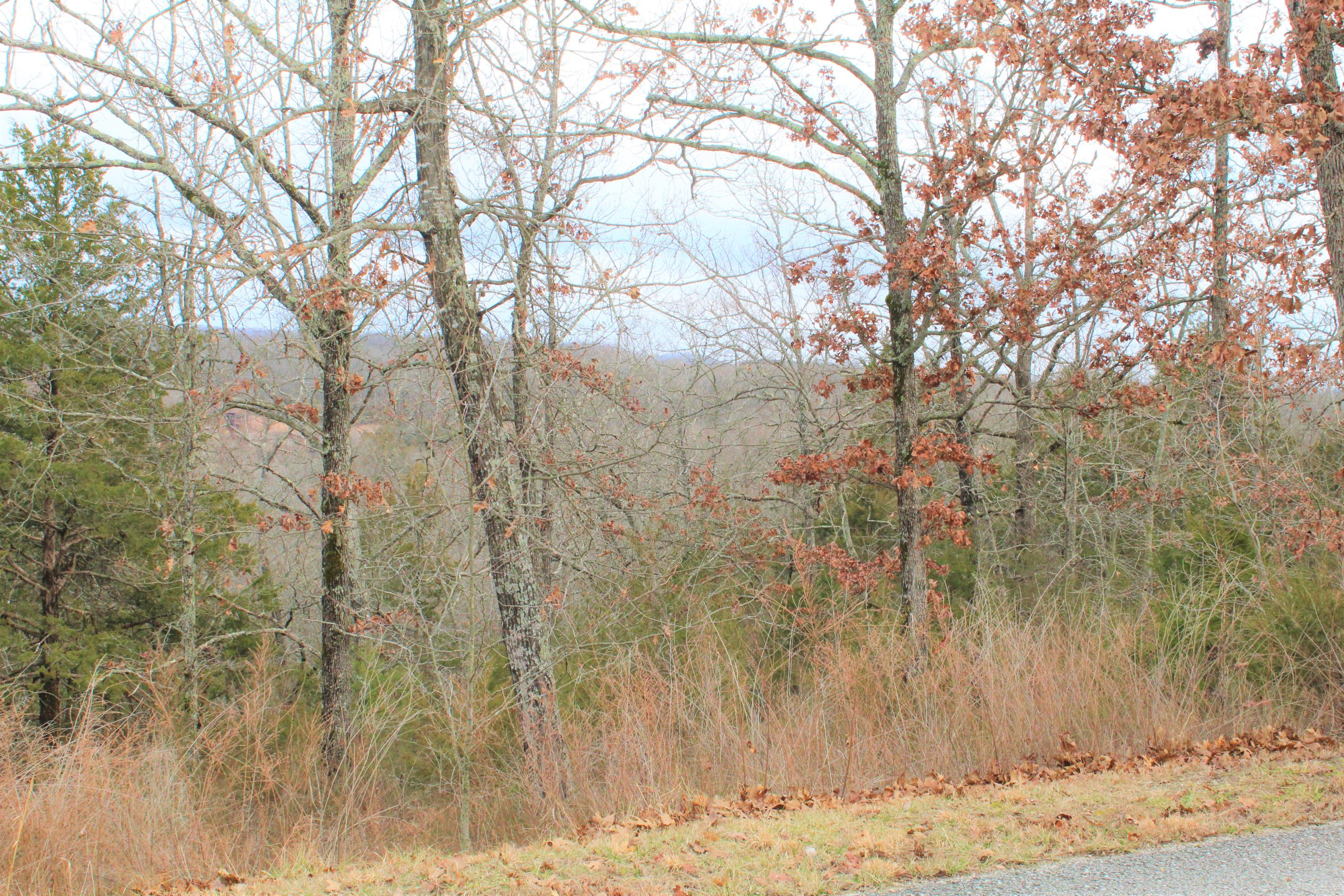 Lot 11 Limestone Drive Reeds Spring, MO 65737