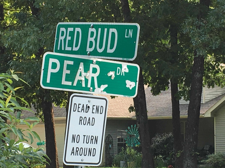 Tbd Red Bud Lane Ridgedale, MO 65739