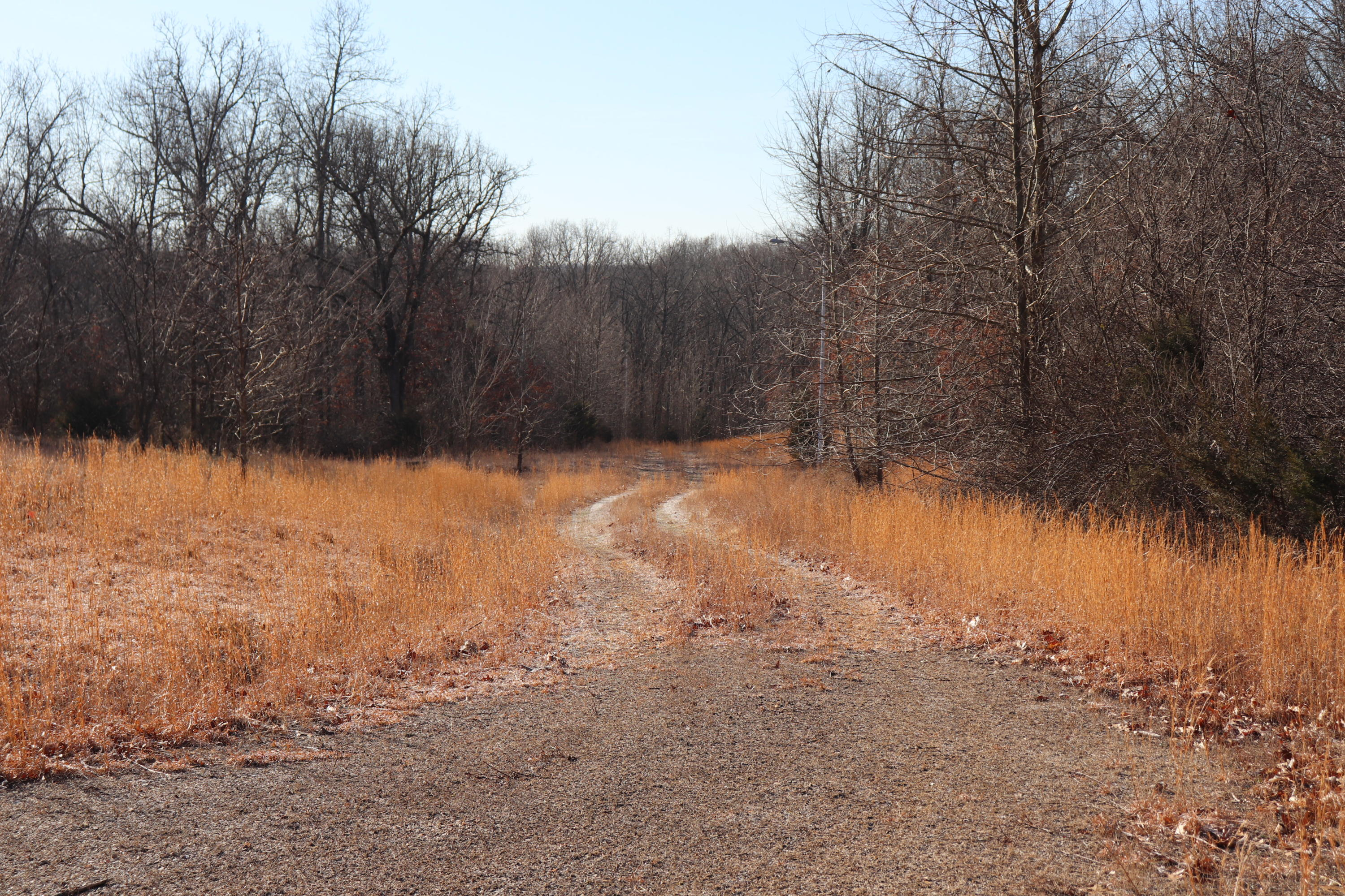 Listen Lane #Tract 3 Clever, MO 65631