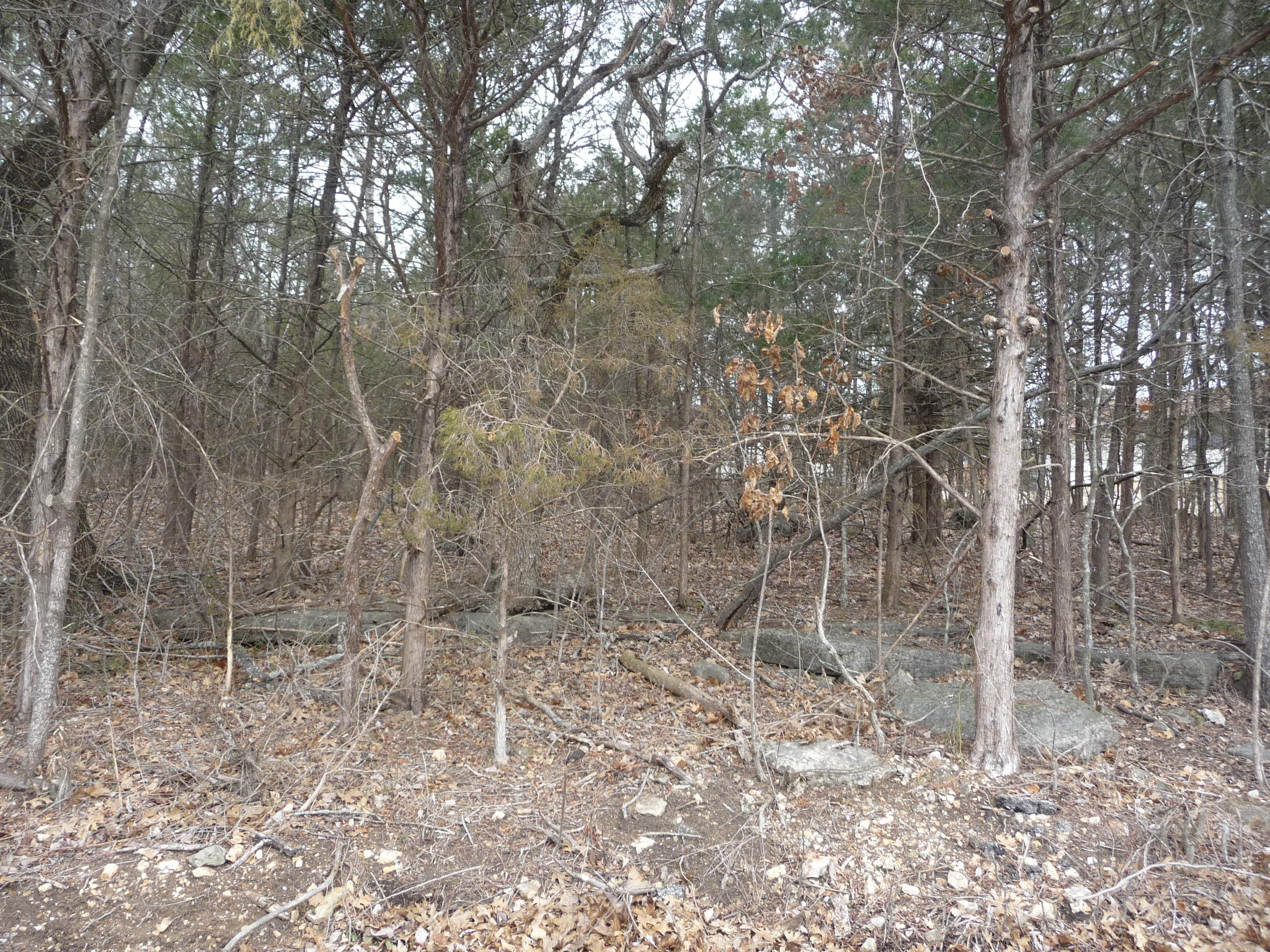 Tbd W. Valley View, Lot 13 Kimberling City, MO 65686