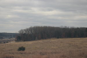 25 m/l acres with pasture and woods. Utilities available