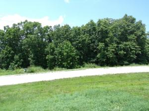 * Emerald Pointe Phase 8 Lot 264