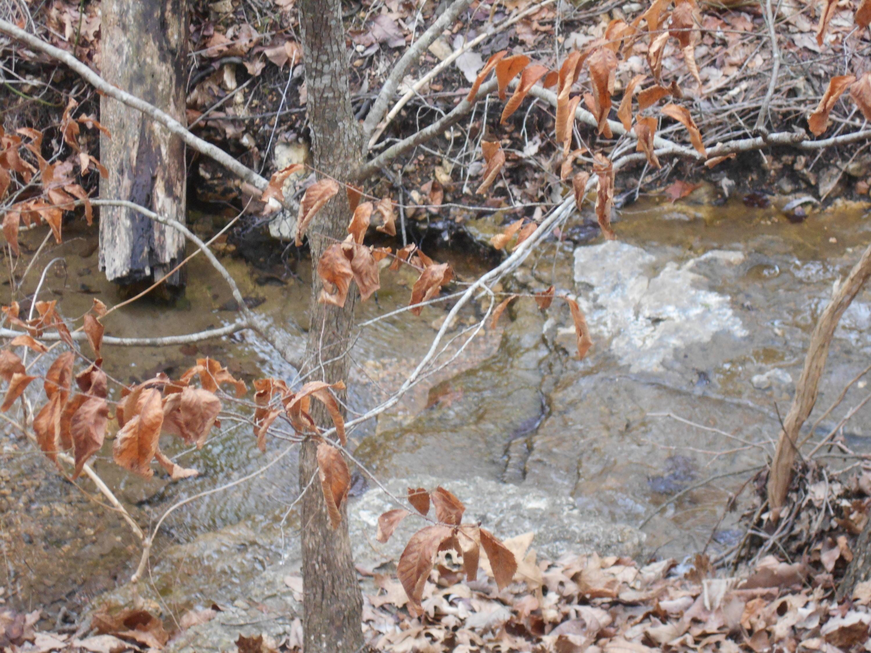 140 Valley Stream Circle #Lot 6 Hollister, MO 65672