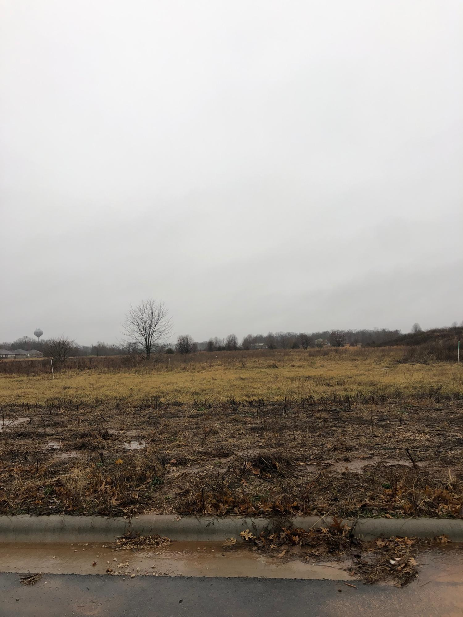Lot 520 River Pointe Phase 1 Ozark, MO 65721