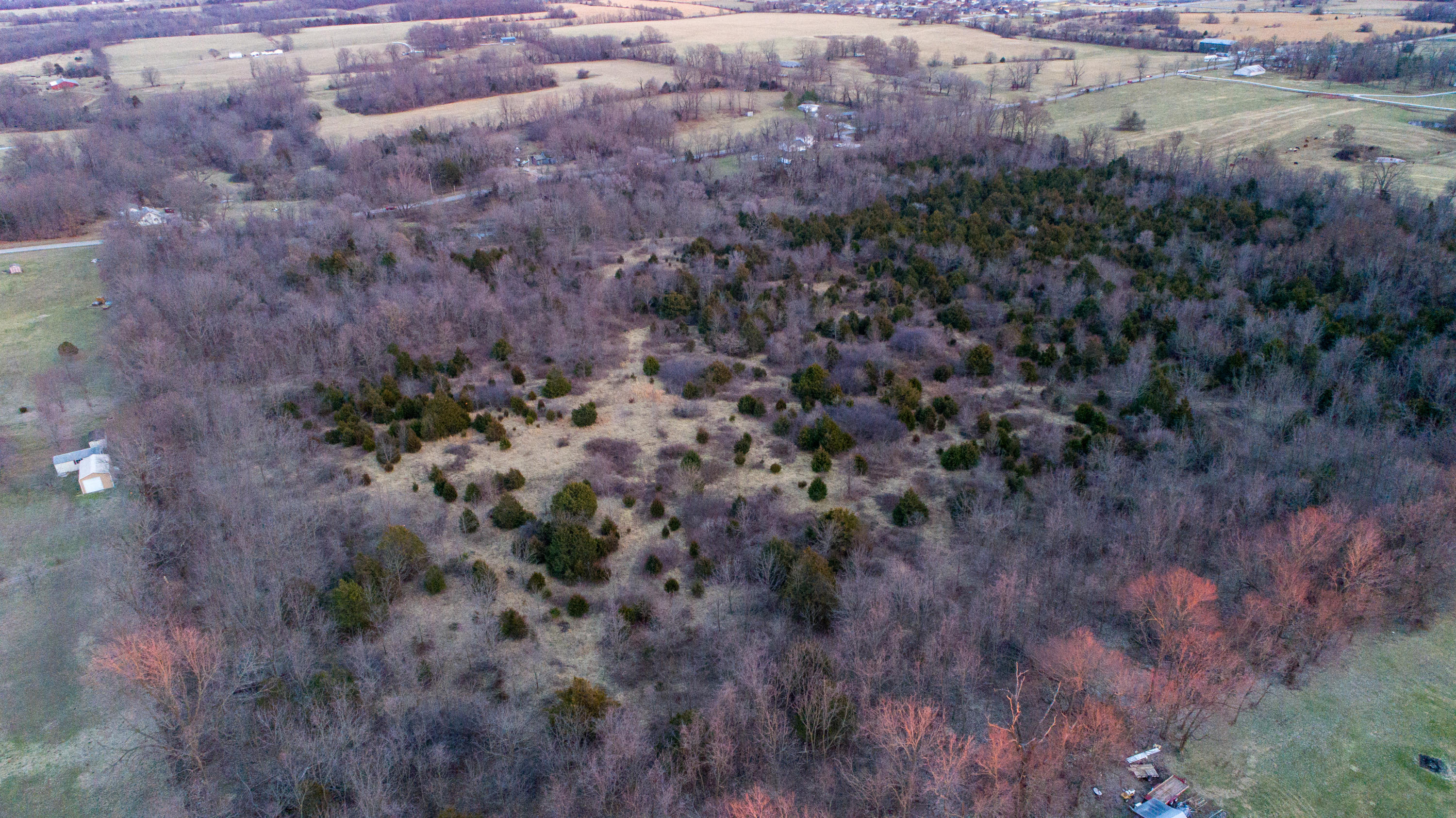 739 State Highway P Clever, MO 65631