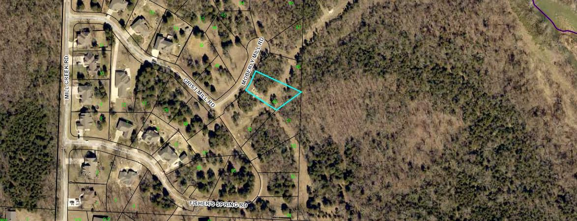 136 Lot 49 Moberly Mill Road Branson, MO 65616