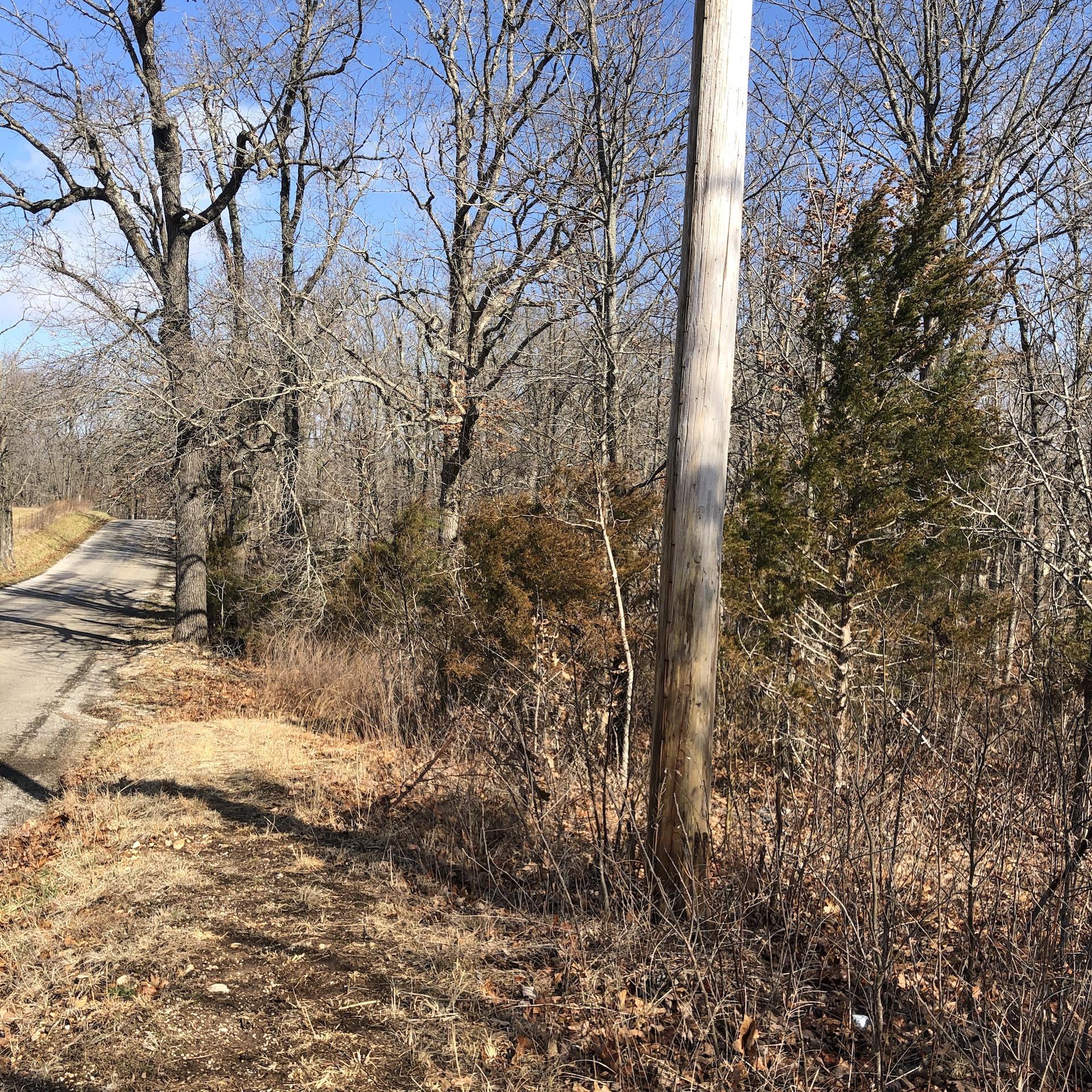 Tbd Hummingbird Road Ozark, MO 65721