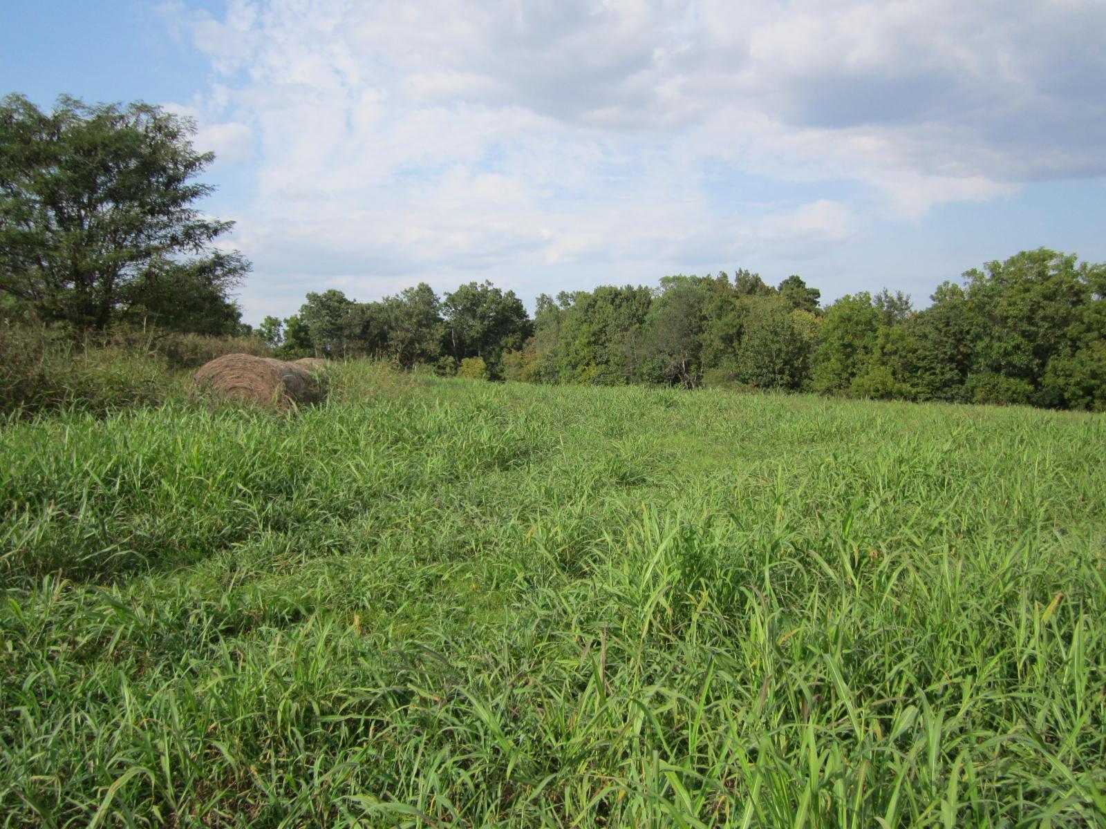 Lot 2 Hidden Valley Estates Clever, MO 65631