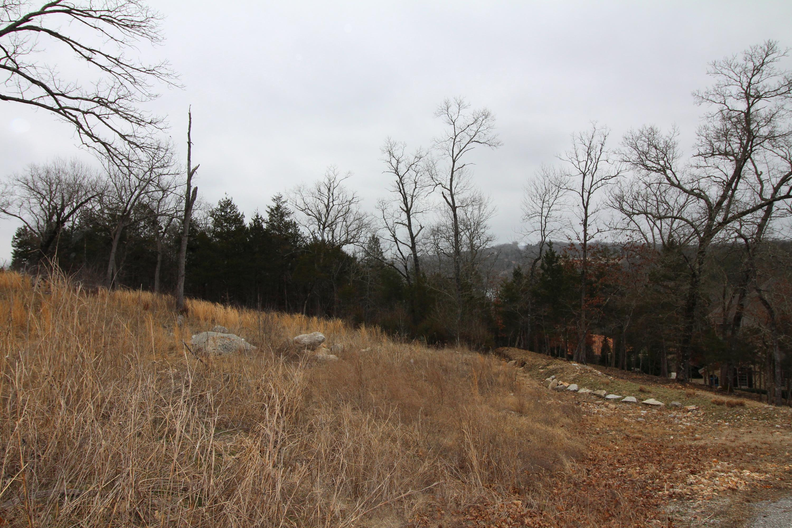 Lot 60 Peaceful Drive Branson, MO 65616