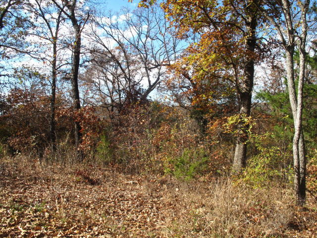 Tbd Lot437 Cedar Lane Shell Knob, MO 65747
