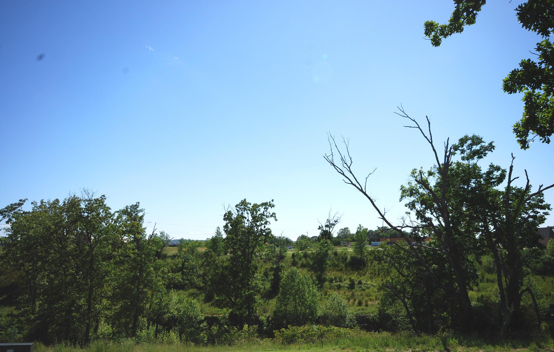 425 Holts Lake Drive Branson, MO 65616