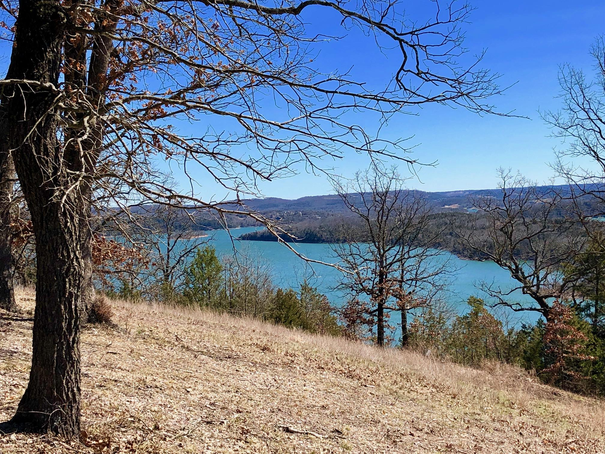 7396 State Hwy Y #Lot 11 Galena, MO 65656