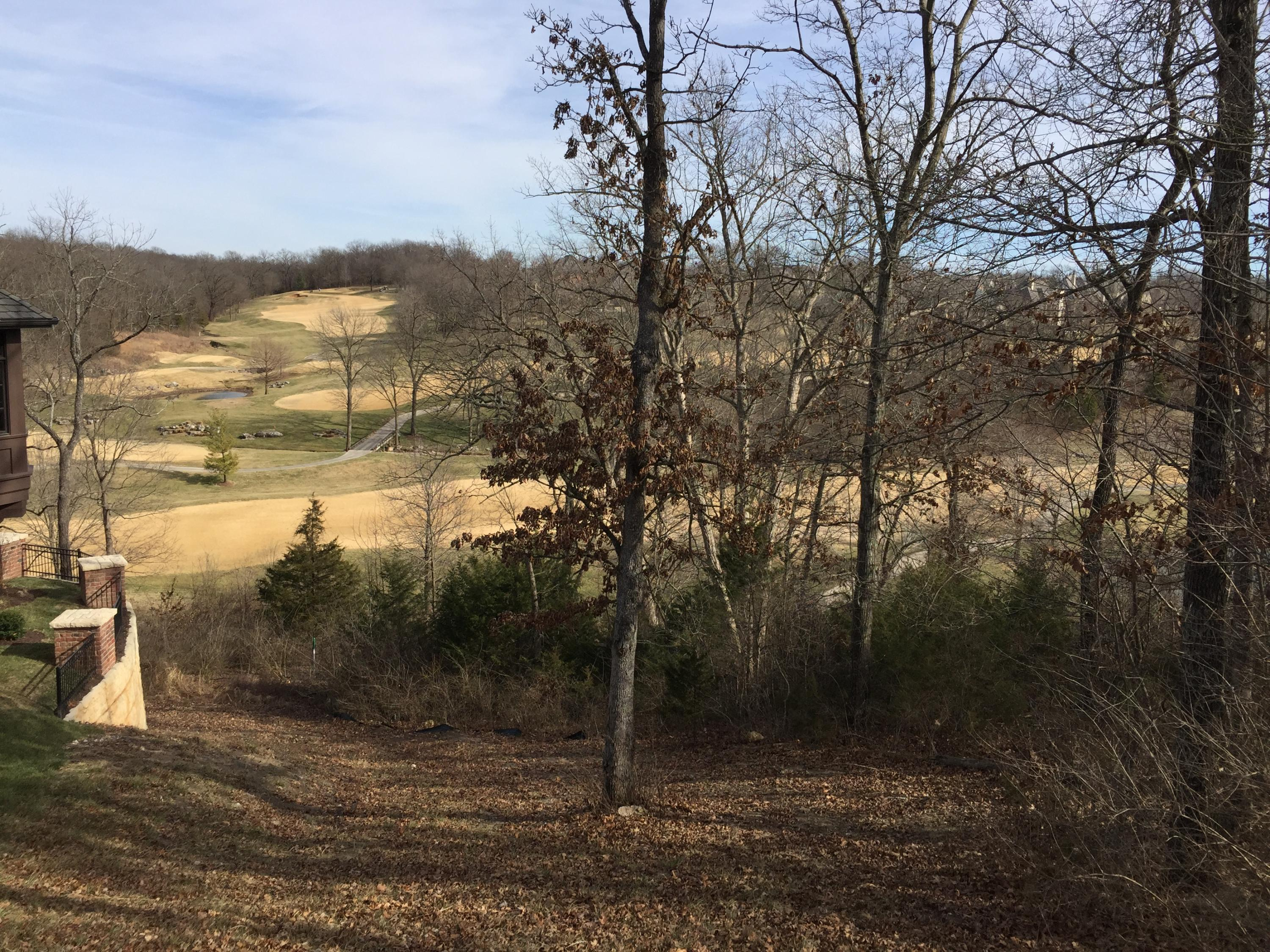 3528 East Bluff Point Drive Ozark, MO 65721