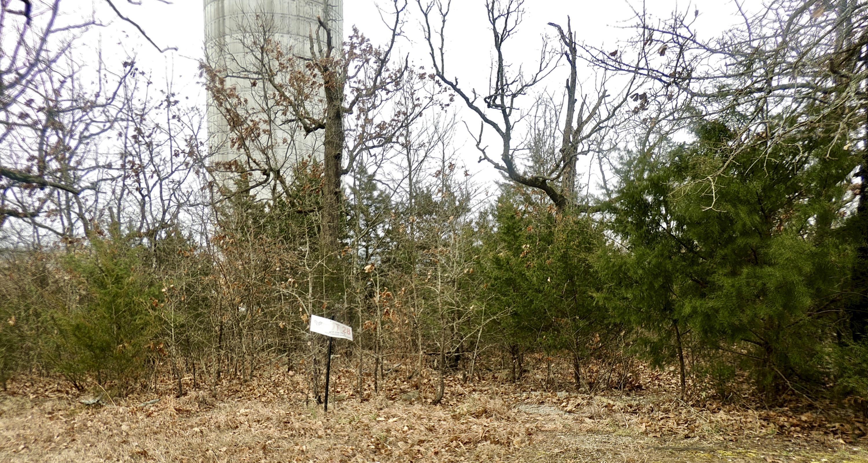 Tbd Lot Windy Ridge Drive Hollister, MO 65672