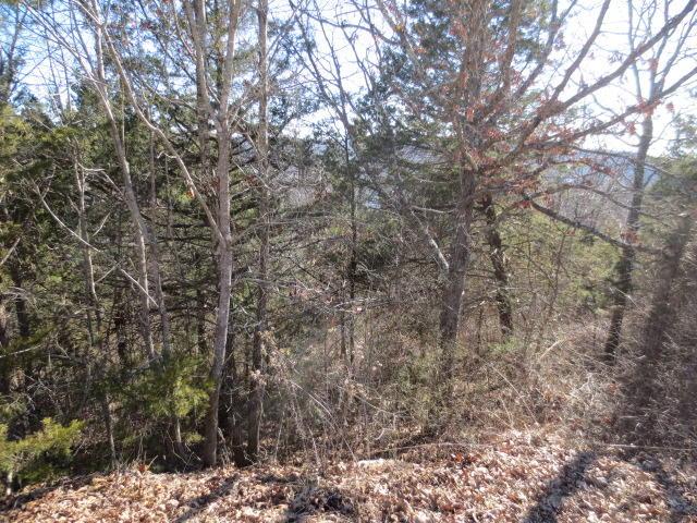 16 Serenity Lane Galena, MO 65656