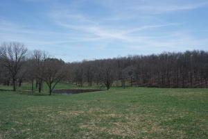 Land for Sale in Southern Missouri Ozarks