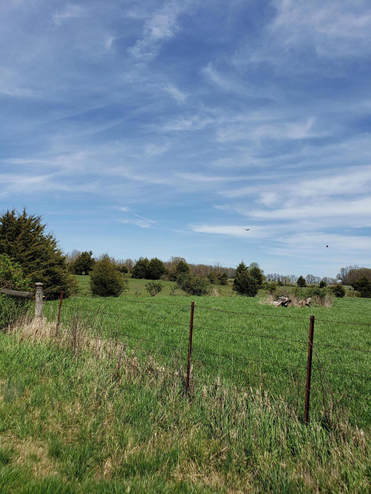 3950 North Farm Rd Strafford, MO 65757