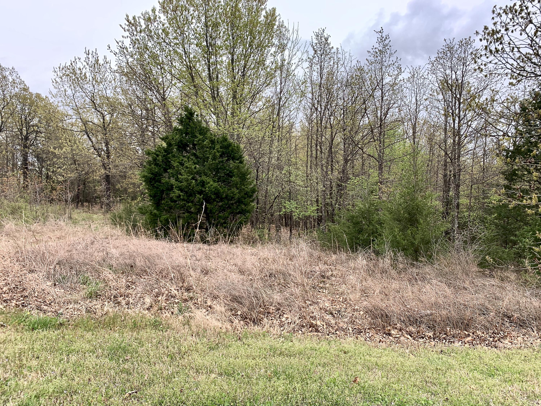 219 Forest Oak Drive Hollister, MO 65672