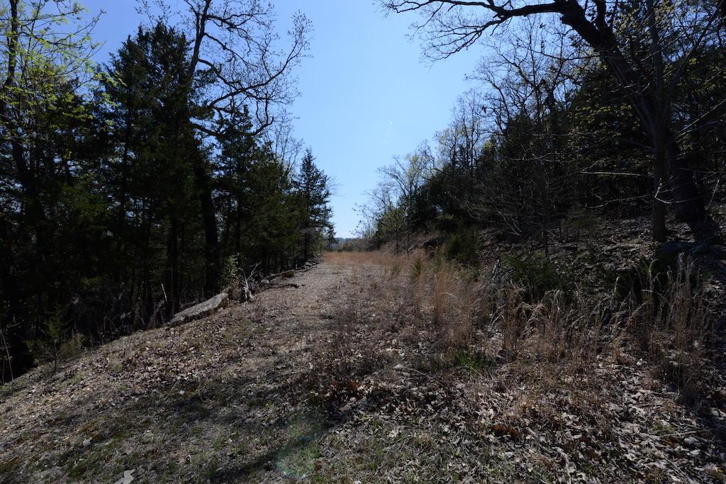 441 Happy Hollow Road Blue Eye, MO 65611