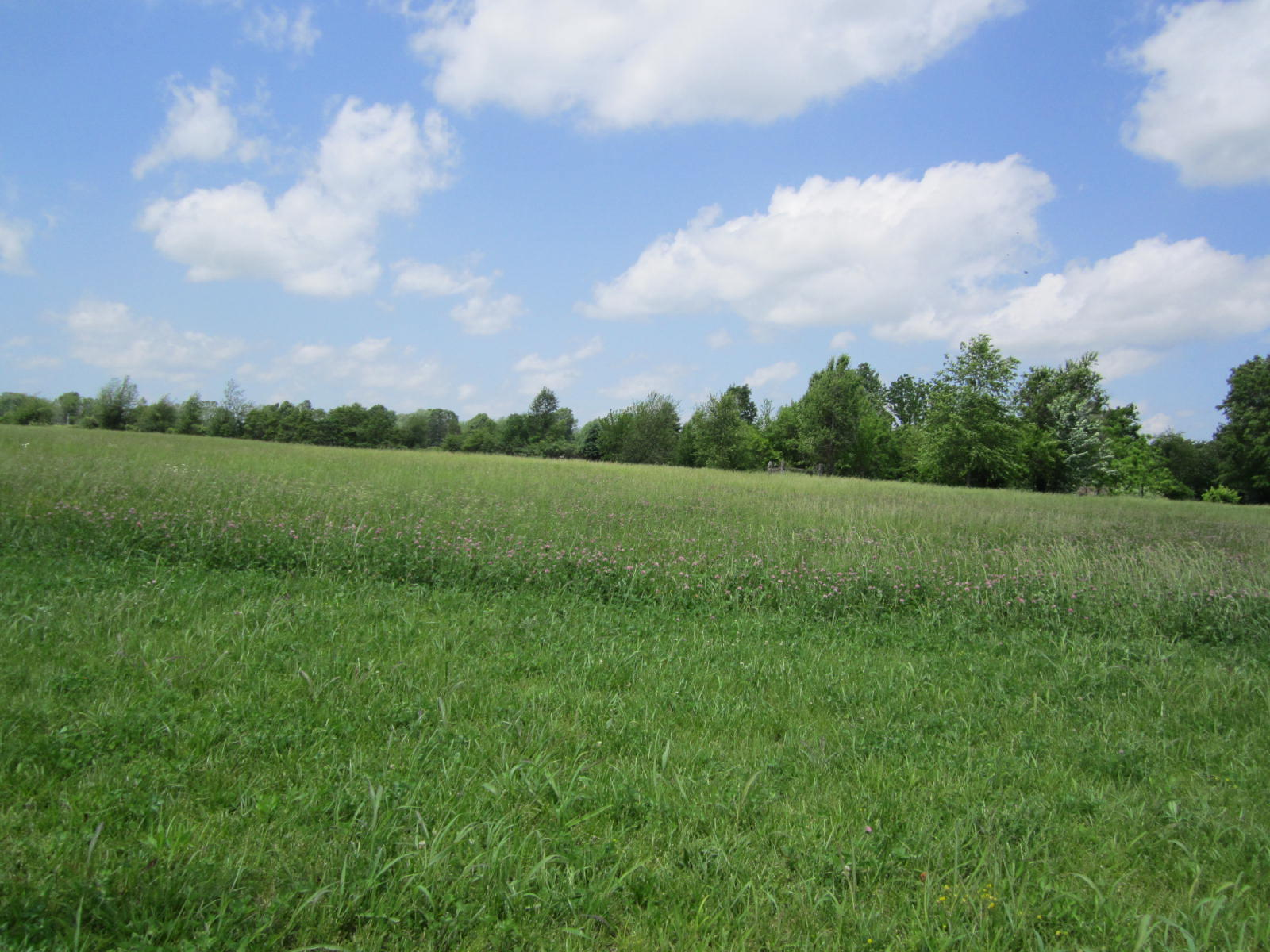 401 South Highway Republic, MO 65738