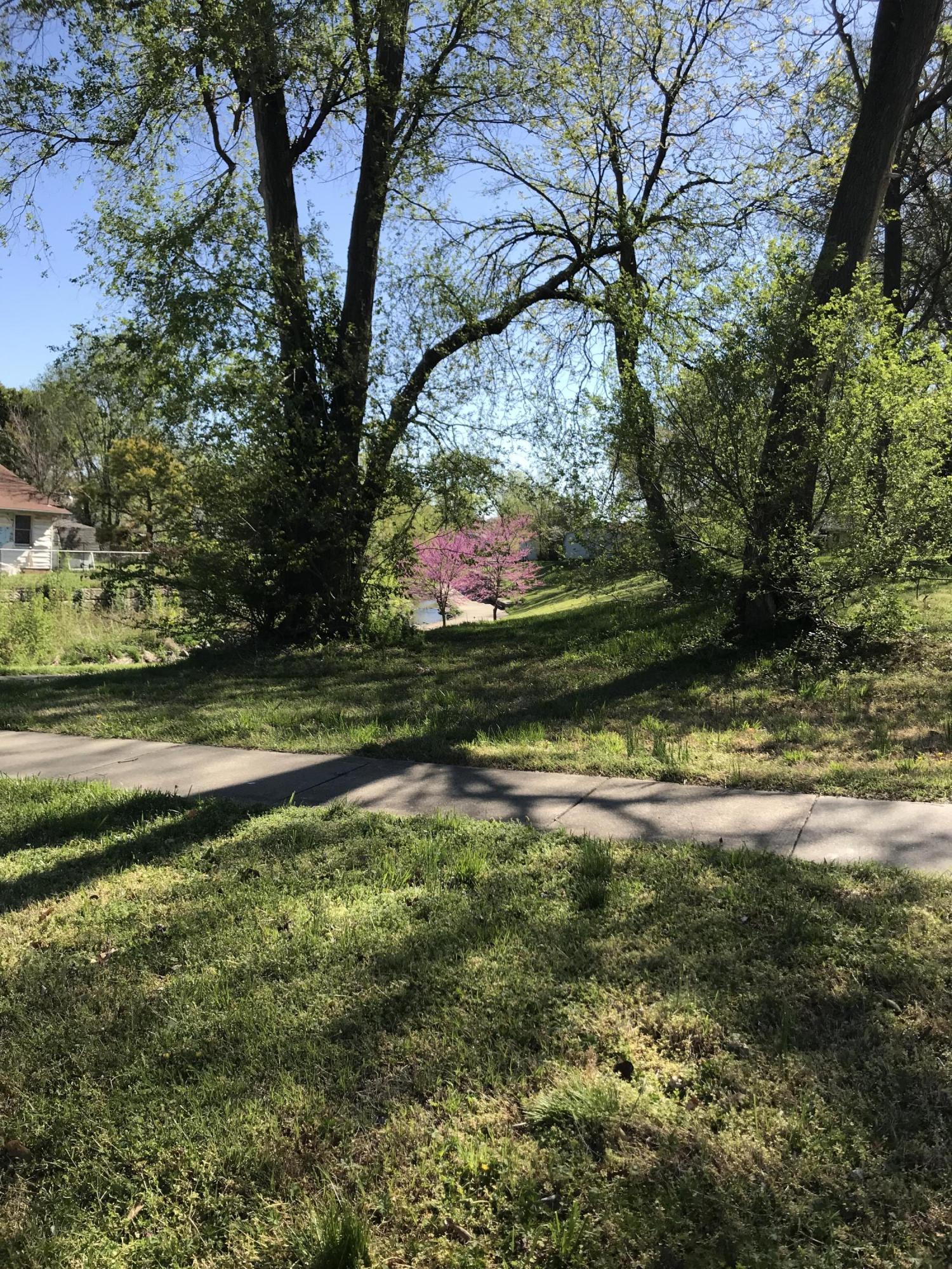 1410 North Prospect Avenue Springfield, MO 65802