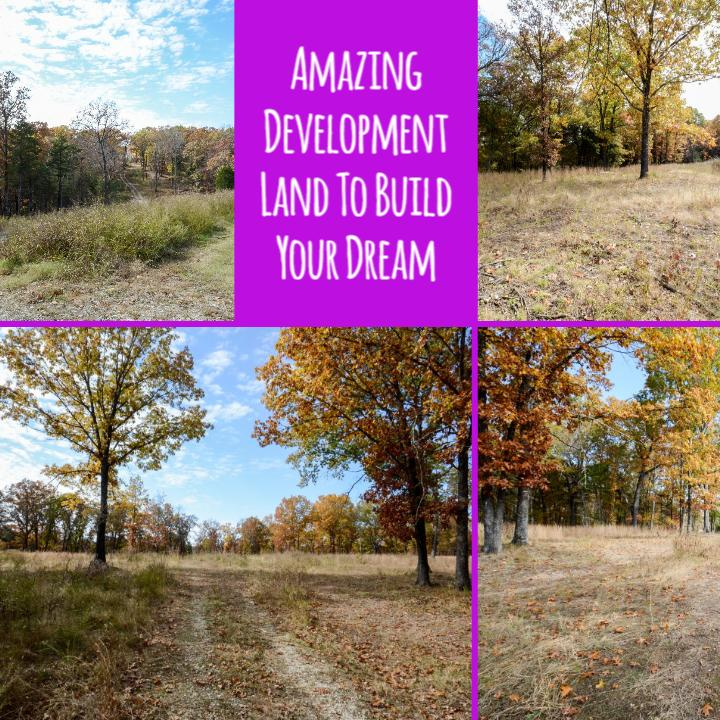 Lot 2 Bee Creek Road Branson, MO 65616