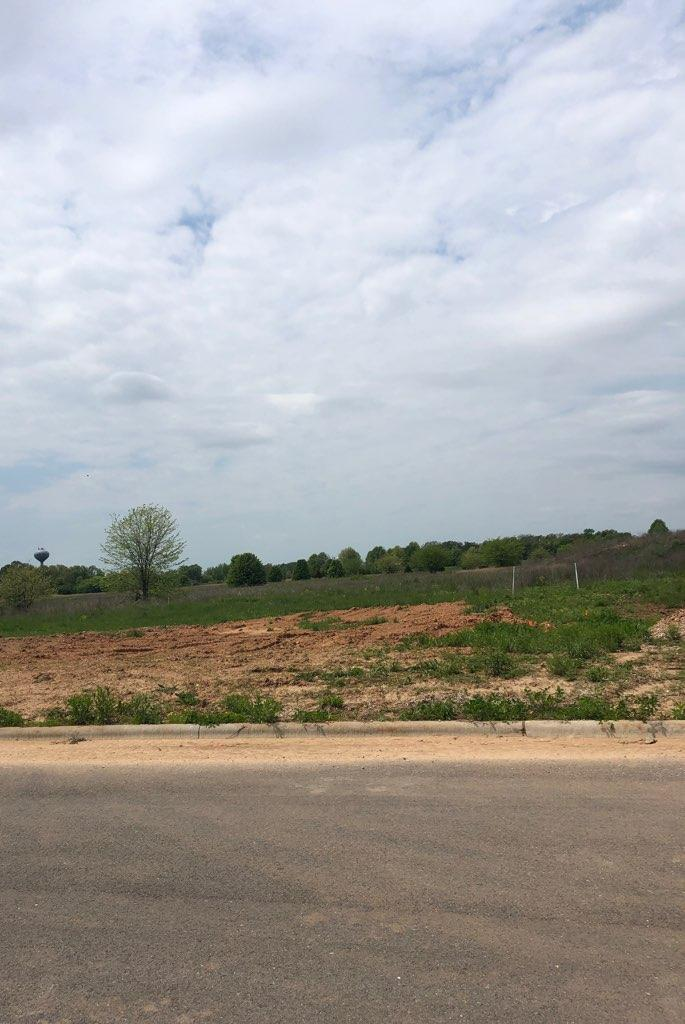 Lot 520 River Pointe Phase Ozark, MO 65721