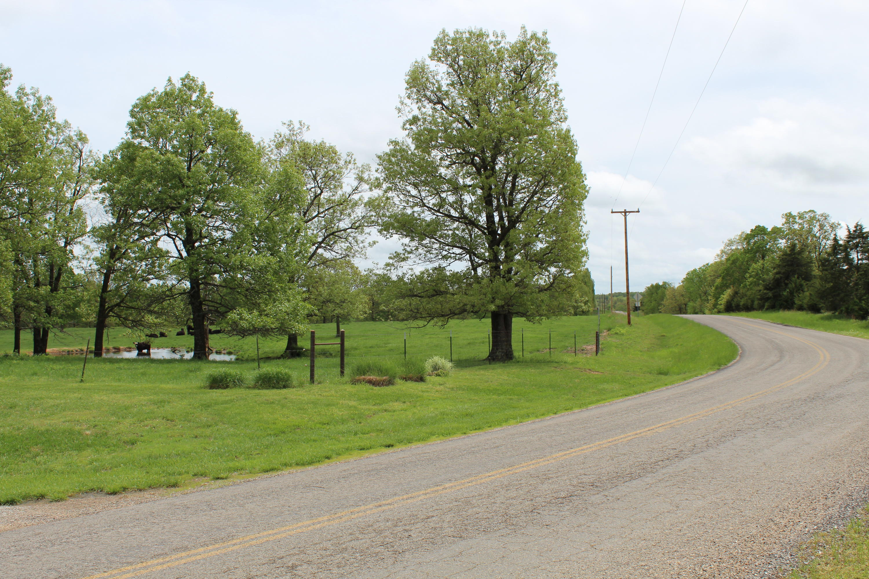 20108 State Highway K Falcon, MO 65470