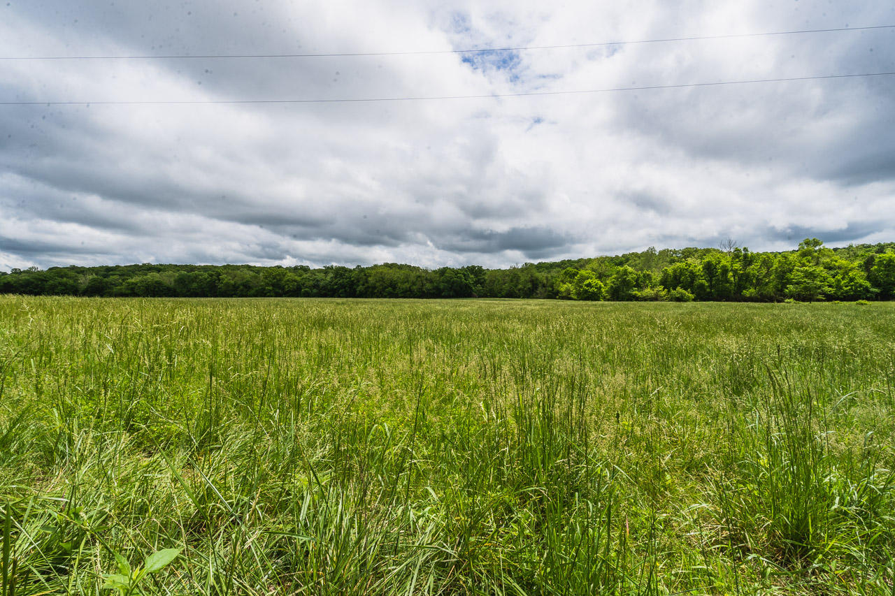 000 County Road Gainesville, MO 65655