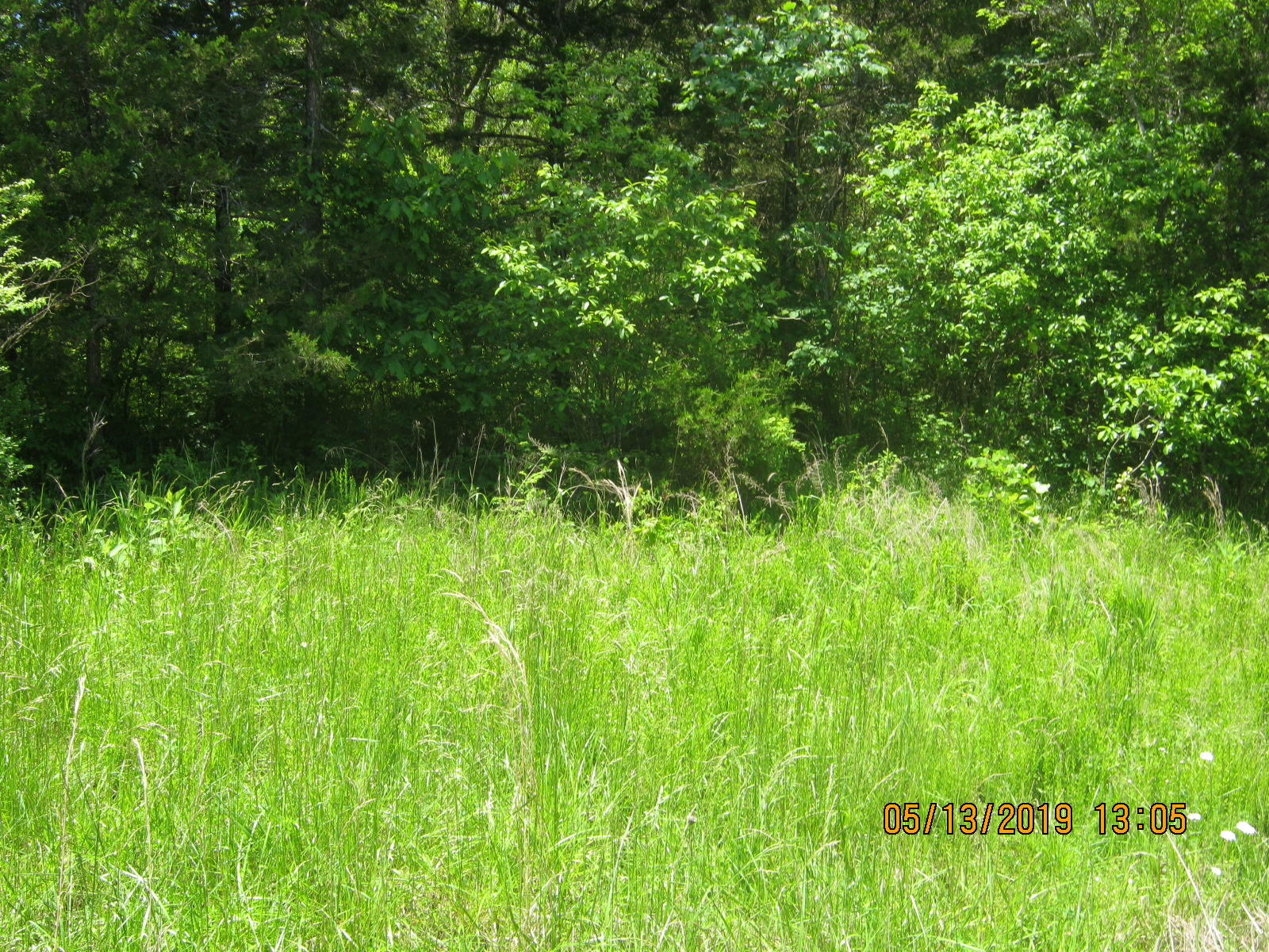 Lot 10 Tribute Falls Cassville, MO 65625