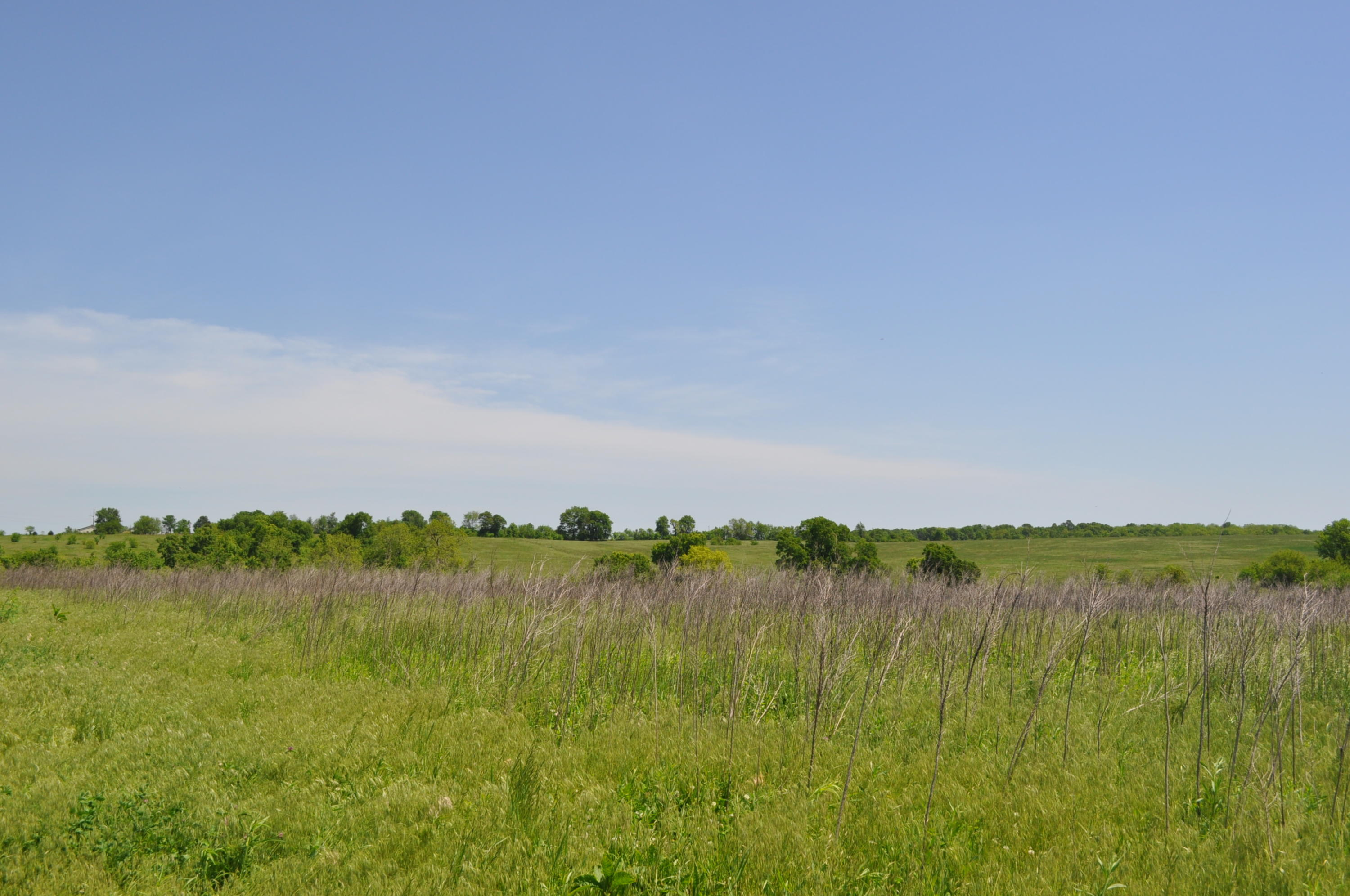 Tbd Terrell Valley Drive Tract Republic, MO 65738