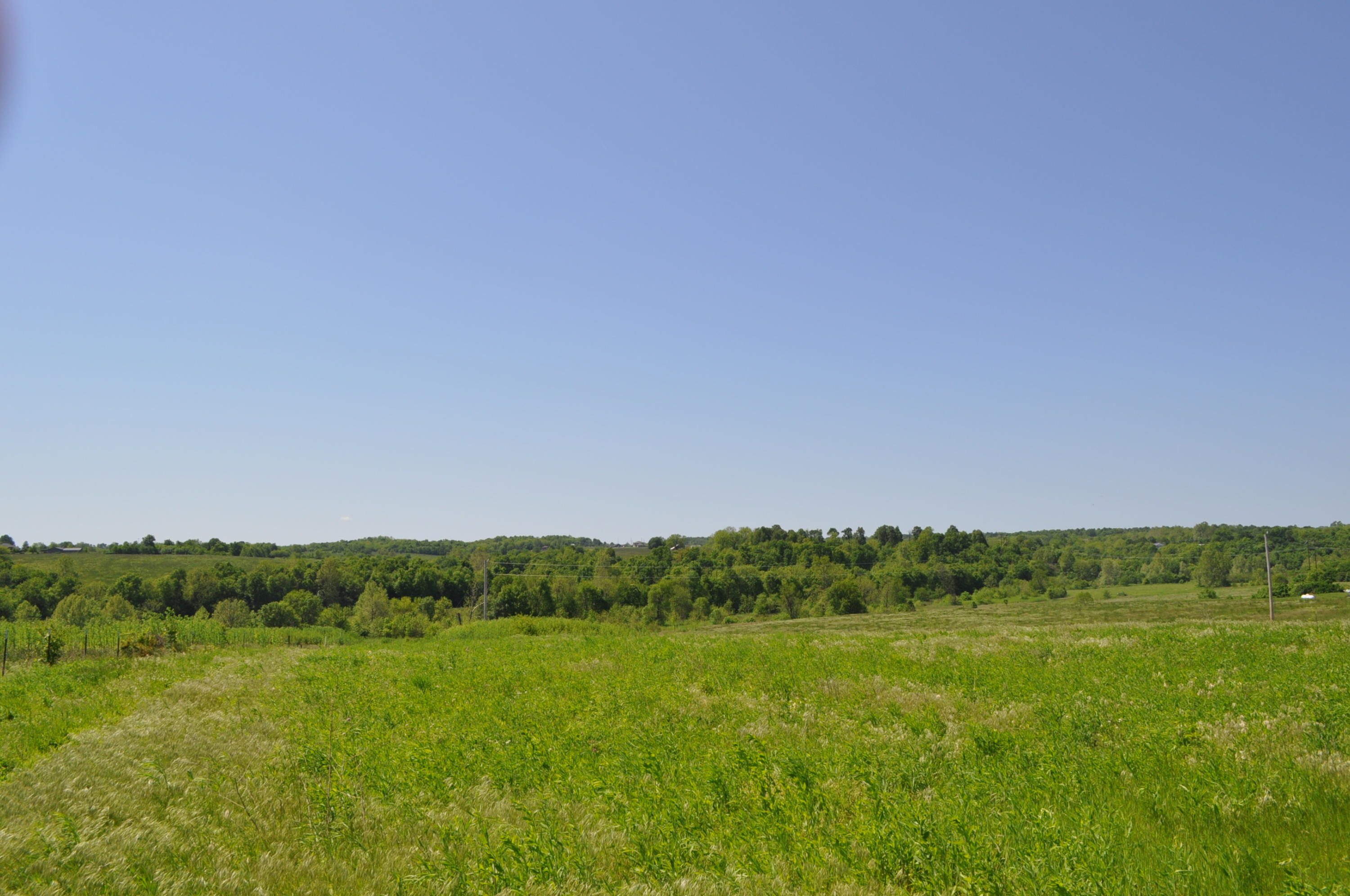 Tbd Terrell Valley Drive Tract-2 Republic, MO 65738