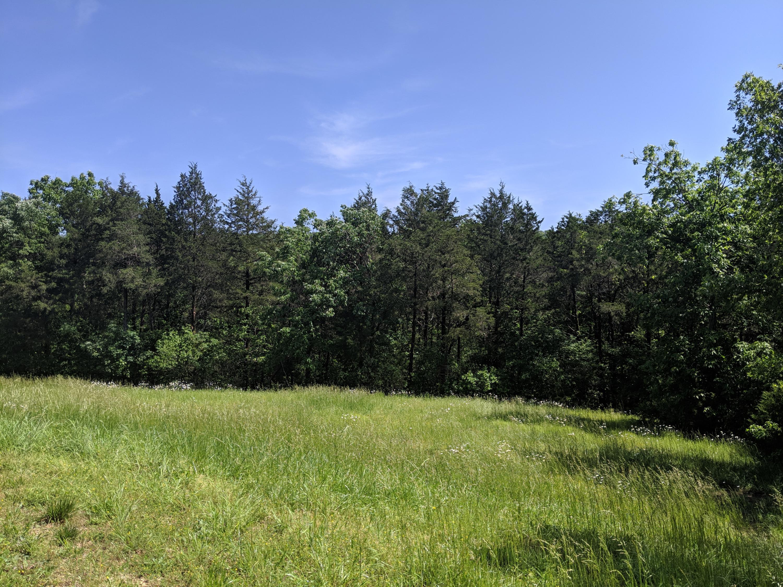209 Appaloosa Trail Saddlebrooke, MO 65630