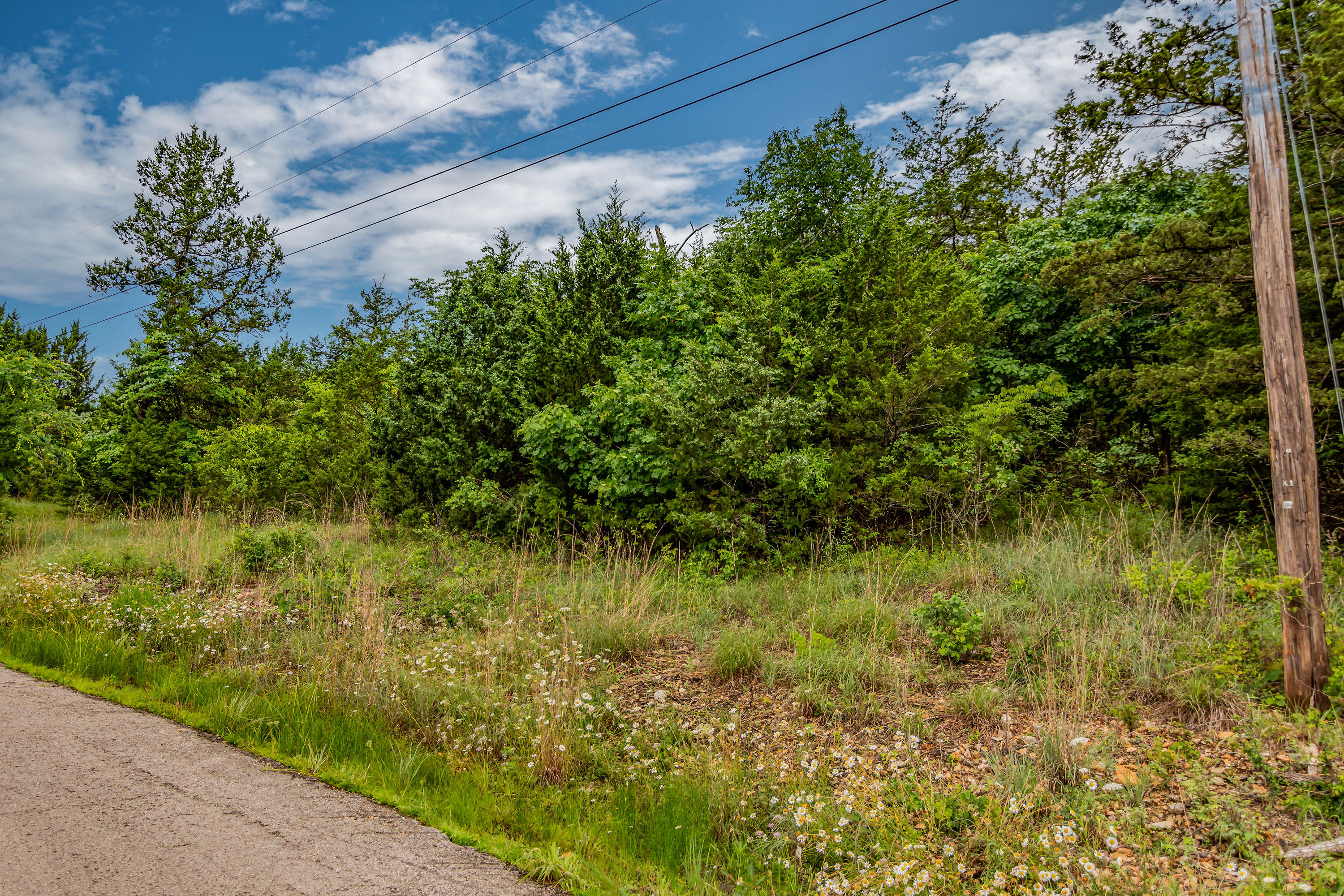 Lot 13 Wilderness Trail Kimberling City, MO 65686