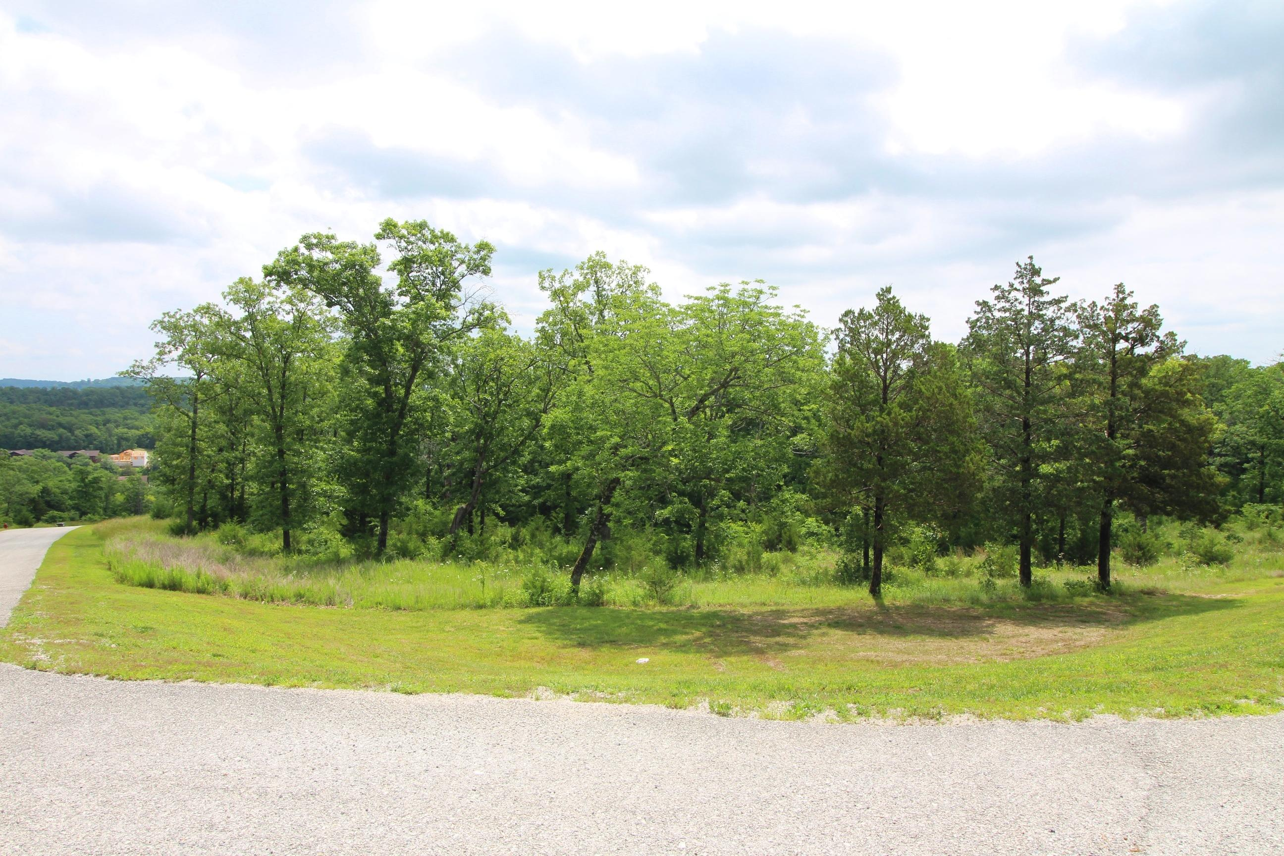 Lot 199 Forest Lake Drive Branson West, MO 65737